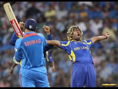 cricket world cup 2011 summary