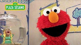 Sésamo: Elmo y el Sr. Noodle cantan