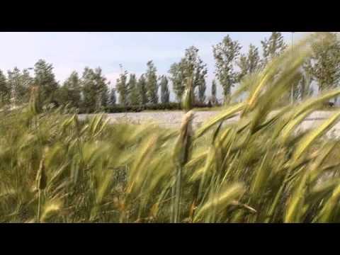 Laley - Una vida (video promo)