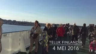 Amazing, Burung Camar Laut Baltik