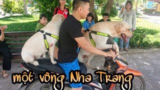 Nô tủi thân vì Fan ở Nha Trang nấu cơm thịt vịt mang cho Củ Cải Kim Chi, Nô ra rìa
