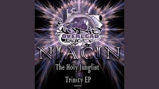Provided to YouTube by Cygnus Music Ltd Pressure Drop · Niacin The ...