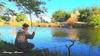 Рыбалка на карася. Ловля на поплавочную удочку. Донка (фидер, закидушка) выручает.
