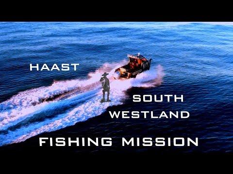 kina sea urchin catch and cook fishing new zealand