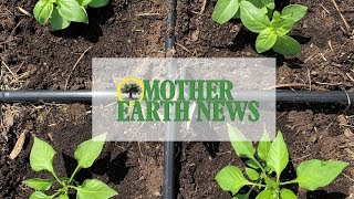 Mother Earth News Community Garden