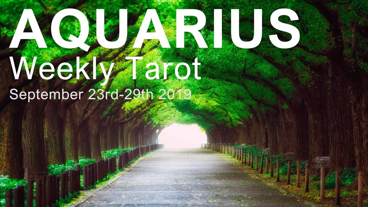 aquarius weekly tarot october 18 2019