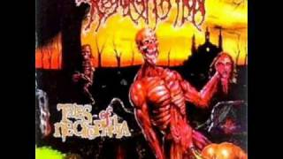 Regurgitation - Acid Enema (TALES OF NECROPHILIA 1999)
