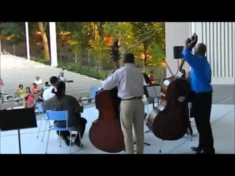 HARLEM ARTS FESTIVAL presents THE HARLEM CHAMBER ORCHESTRA ENSEMBLE