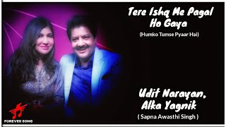 LYRICS : TERE ISHQ ME PAGAL HO !! ALKA YAGINK - UDIT NARYAN !! SAPNA AWASTHI SINGH !! HINDI SONG