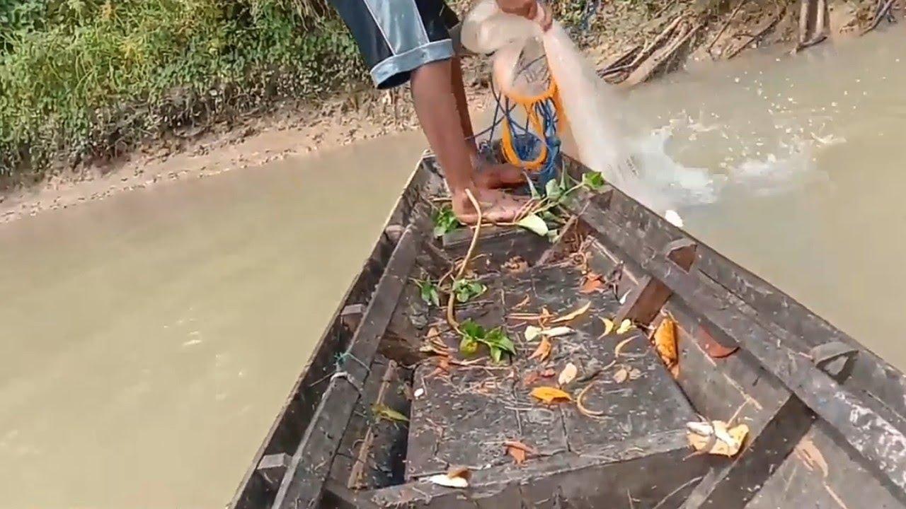 Download menjala ikan tawes,,pakai perahu...lihat hasilnya...!!!