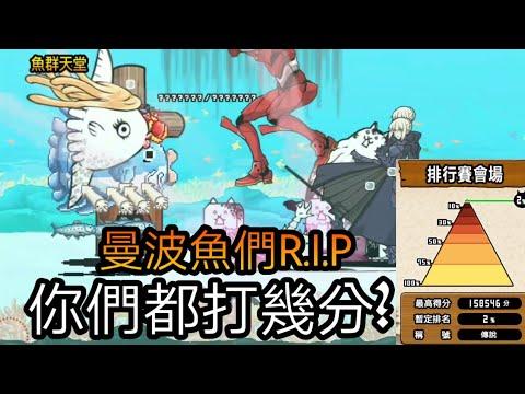 【貓咪大戰爭】 活下去吧!曼波魚 排行賽會場魚群天堂