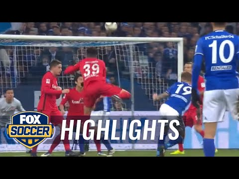 FC Schalke 04 vs. Eintracht Frankfurt | 2016-17 Bundesliga Highlights