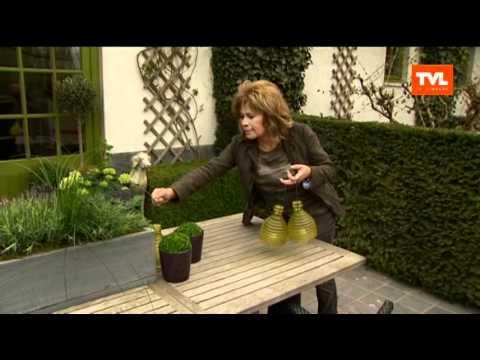 Tuin zuiderse sfeer op je terras en hoe leg je tuinpad aan youtube - Hoe amenager tuin ...