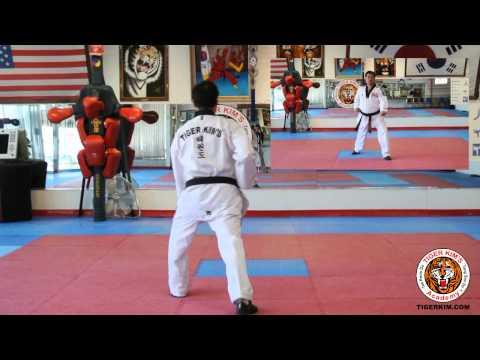Tiger Kim's Academy Kee Cho Hyung IL Basic Form 1 One