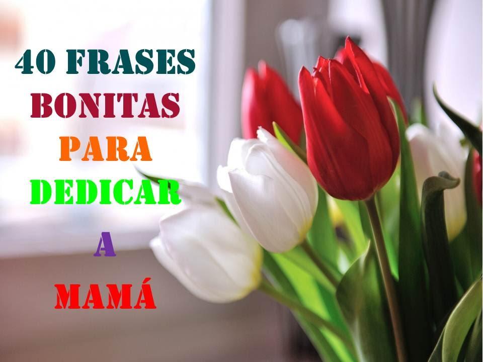 Quotas Para Mama: 40 FRASES BONITAS PARA DEDICAR A MAMA