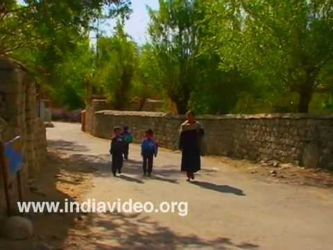 Village Children, Hundar, Ladakh