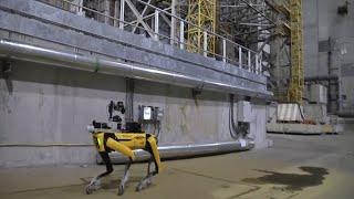 video: Boston Dynamics' robot dog sent into Chernobyl to sniff out radiation