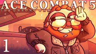 Скачать Shorebirds Ace Combat 5 The Unsung War Mission 1