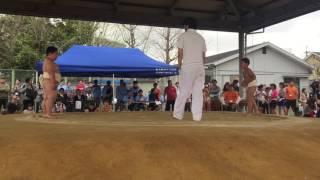 初めてのわんぱく相撲参加!320人と過去最多からの2年生男子3位入賞!勝...