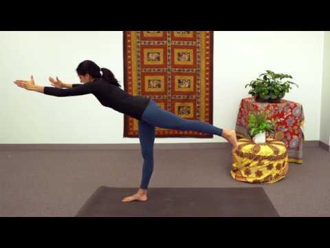 introduction to anatomy through yoga fulllength yoga