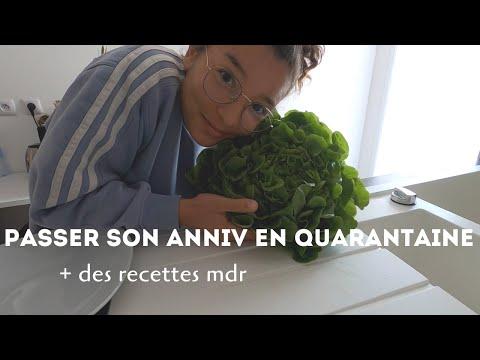 vlog-|-mon-anniversaire-confinée