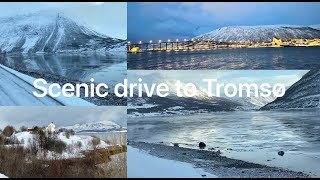 day-7-northern-lights-of-scandinavia-insight-vacations