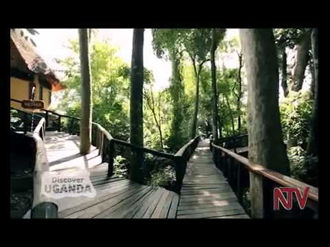 Discover Uganda: Wild Waters Lodge