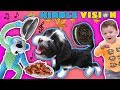 OUR PUPPY DOG TALKING ABOUT FOOD!  FUNnel Vis OREO Songs Compilation Vlog + Climbing Wall T
