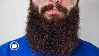 beardbarber