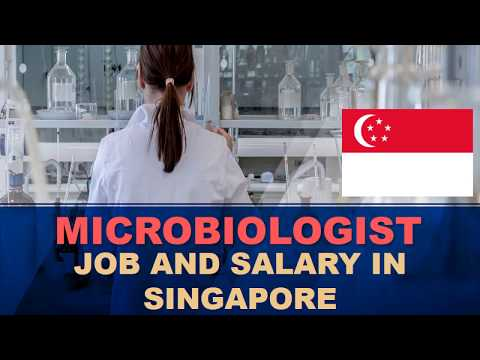 Microbiologist Salary In Singapore - Jobs And Salaries In Singapore