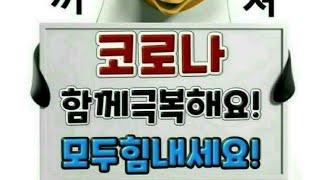 #브이로그#진해군항제 공연가는길.추억속에#달님원곡.김수…