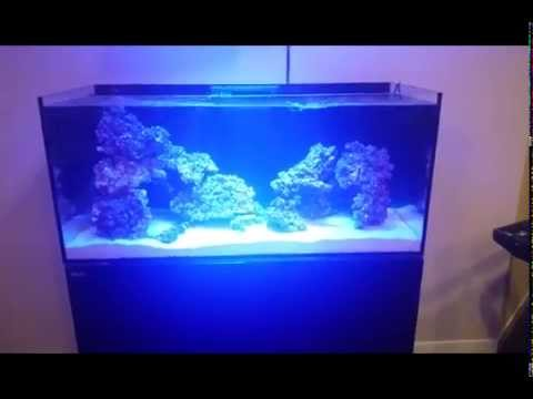 Red Sea Reefer 350 Part 4 Review Equipment Sump Gyre Review Youtube
