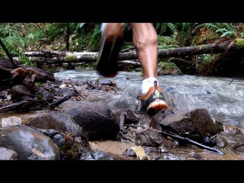 Trail Running in Oregon