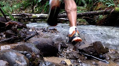 Trail Running in Oregon