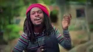 Max Jenmana – วันหนึ่งฉันเดินเข้าป่า (Music Video)
