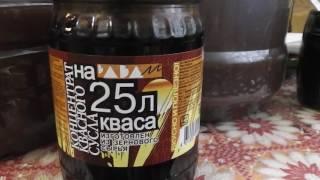 Брага из квасного сусла и бородинского хлеба