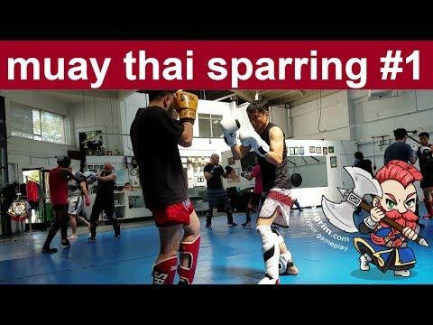 Muay Thai (Kickboxing) Light Sparring