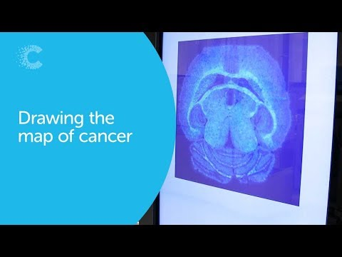 New ways to diagnose and treat cancer - drawing a new map in 2019 | Cancer Research UK