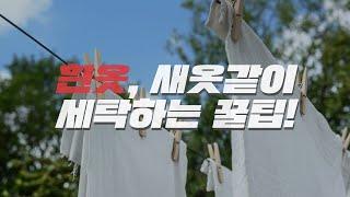 흰옷얼룩 제거방법! 새옷같이 세탁하는 세탁꿀팁!