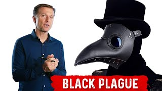 The Black Plague: Interesting New Findings