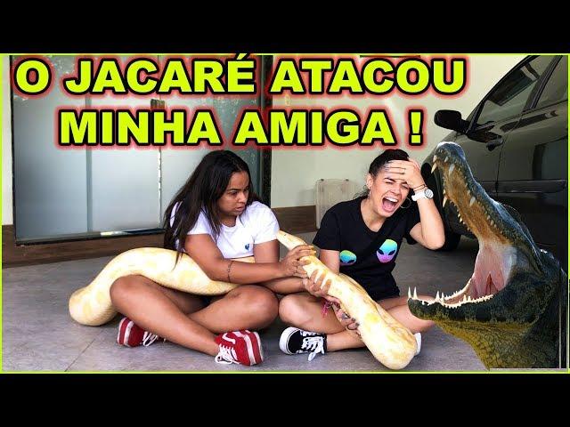 PEGANDO EM ANIMAIS PERIGOSOS feat. JULLY MOLINA