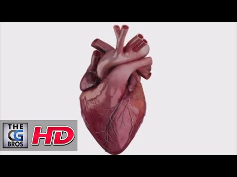 "CGI 3D Tech Demo : ""Heartworks - Heart""  - by Glassworks VFX"