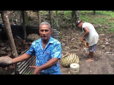 Sunseekers Samoa Tours