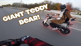 GIANT TEDDY BEAR ON A MOTORCYCLE!!