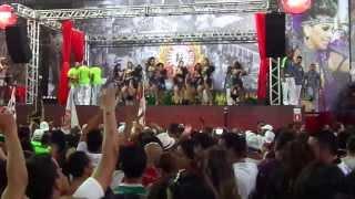 Baixar Andar com Fé (Gilberto Gil) - Mocidade Alegre - Final de samba enredo para 2014