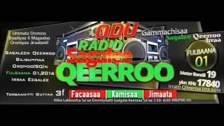 SQ-Sagalee Qeerroo Bilisummaa Oromoo, Adoolessa 14, 2017