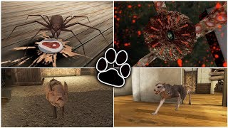 Horror Pets  Grandpas Giant Octopus Vs Grannys Spider Vs Mr. Meats Pig Vs Dark  Nternet Cat