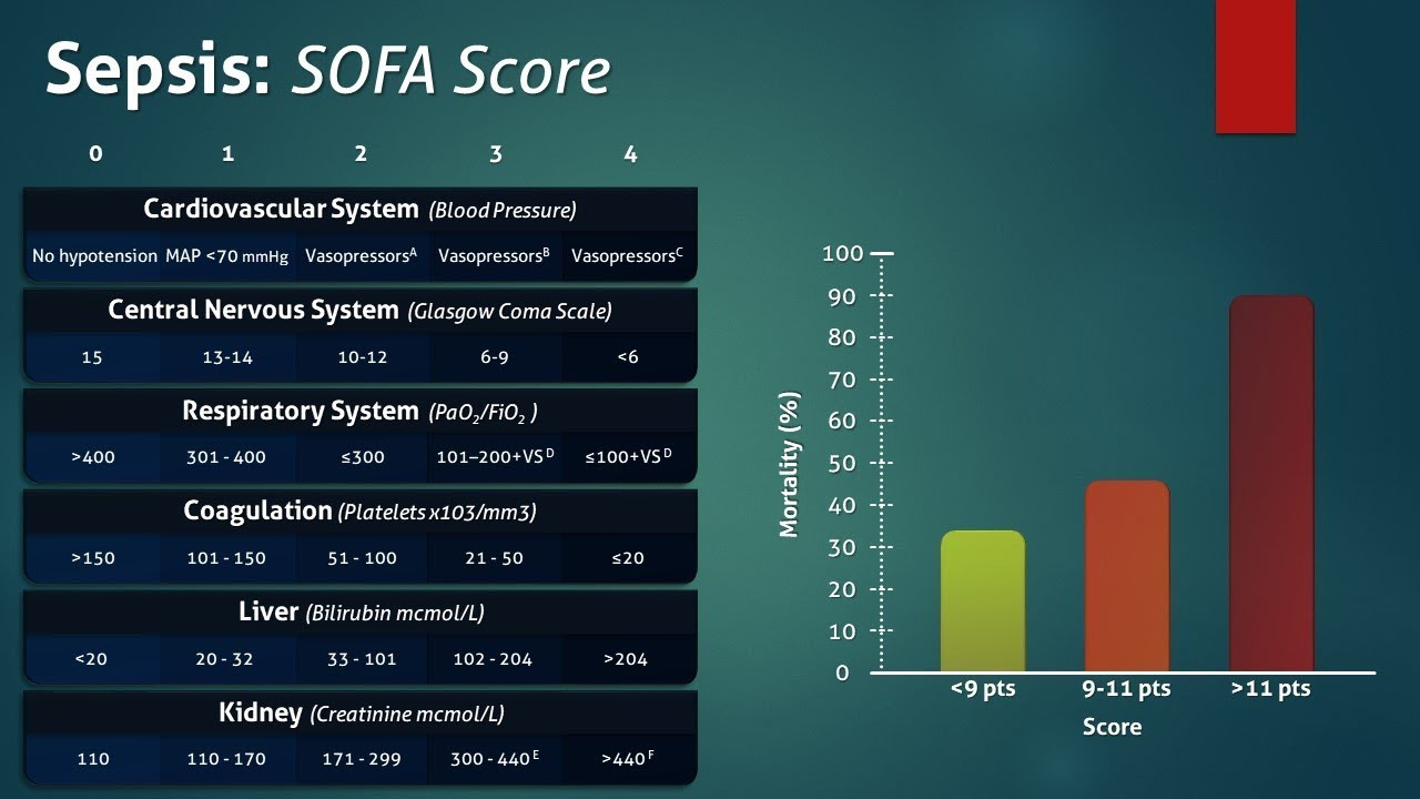 Sofa Score Sepsis Sofa Score Interpretation