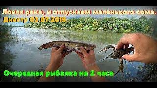 Днестр 03.07.2019.  Очередная рыбалка на 2 часа. Ловля рака, и отпускаем маленького сома.