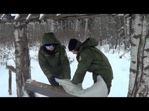 Ликино-Дулево: Свалка на месте заповедного леса?!